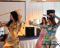 Nefertari Egyptian Folkloric Dance