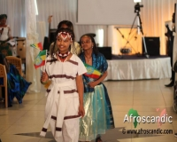 African Cultural group, sweden