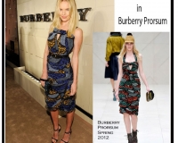 Kate Bosworth in an African attire, spring-2012-collection