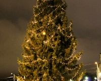 Christmas tree in Brunnsparken, guthenburg
